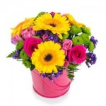 Types of Flowers – Gift Giving