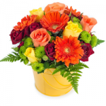Flowers To Give Your Home a Touch of Spring